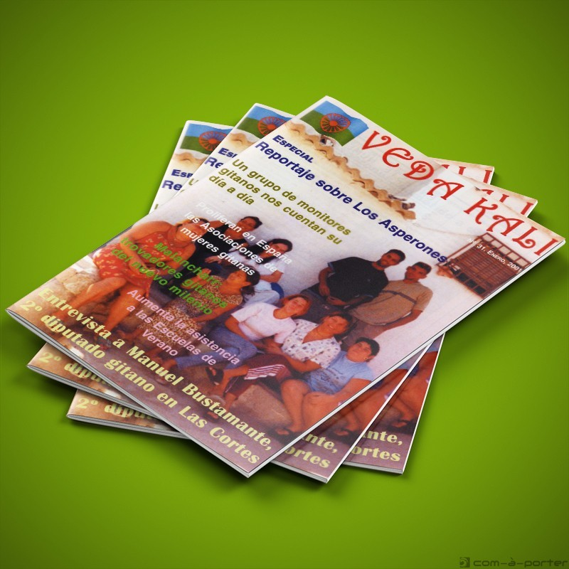 Revista VEDA KALI nº 31