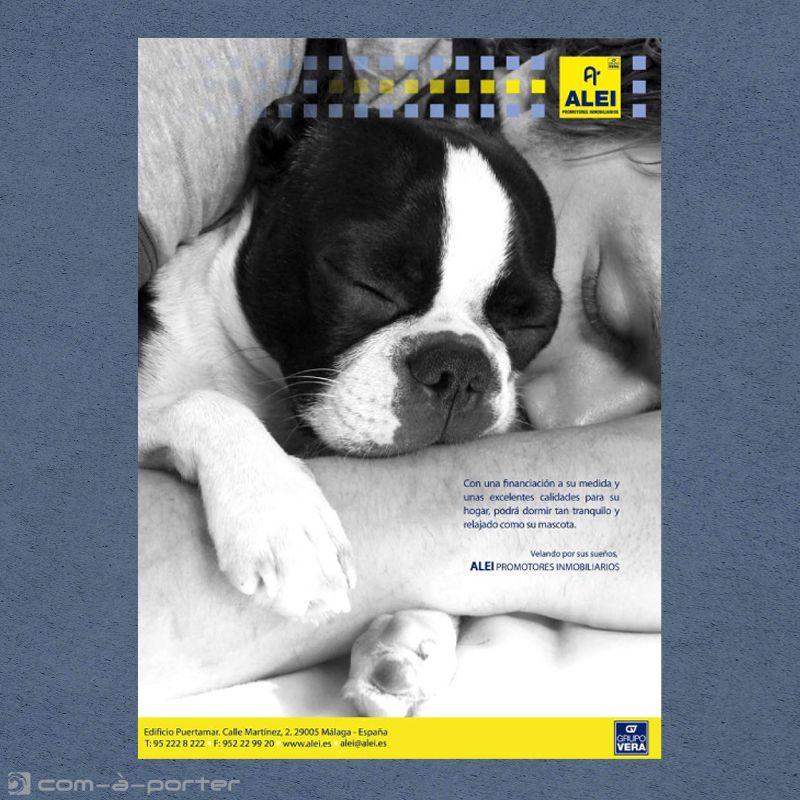 Páginas completas de Publicidad Corporativa de ALEI Promotores Inmobiliarios