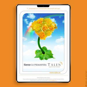 Newsletters Cuatro Estaciones (2015) de TALEN Cocktails & Show