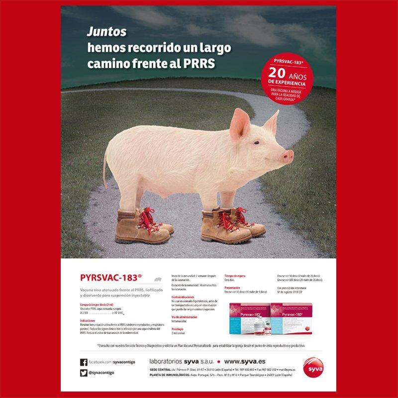 Páginas completas de Publicidad de Vacunas para Porcino de Laboratorios Syva