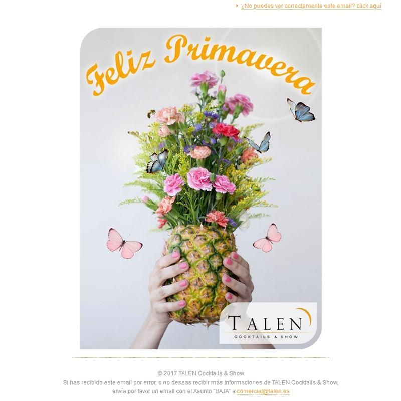Newsletters Cuatro Estaciones (2017) de TALEN Cocktails & Show