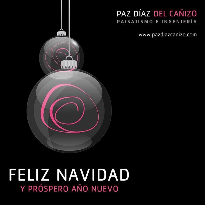 Diseño de Felicitación de Navidad 2020 para las Redes Sociales de Paz Díaz del Cañizo Paisajismo e Ingeniería